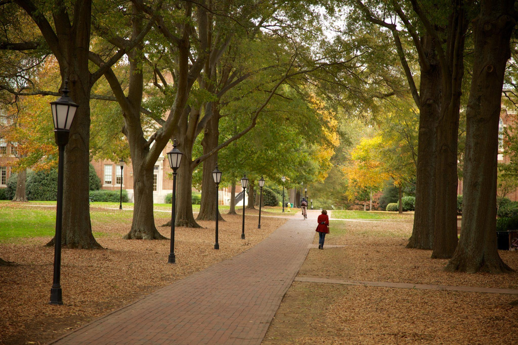 Love the fall in North Carolina
